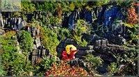 梭布垭石林风景(1)