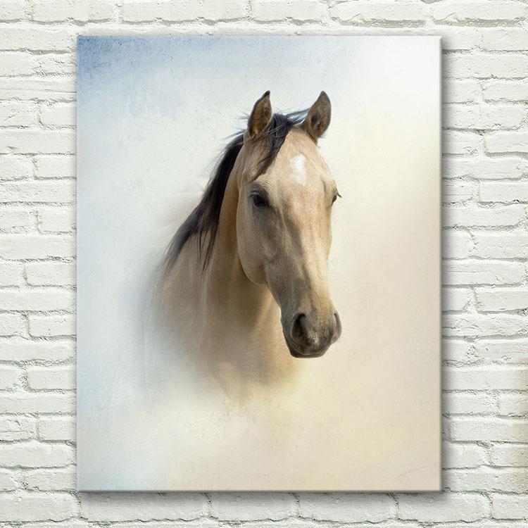 画画边框装饰图片大全动物