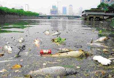多年来,中国水资源质量不断下降,水环境持续恶化,由于污染所导致的缺图片