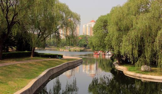 龙湾公园,在山区龙湾转盘东南侧,介于龙港区与连之间,东北临海滨路,西