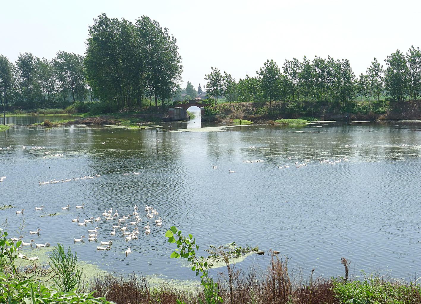 射阳河口风景区
