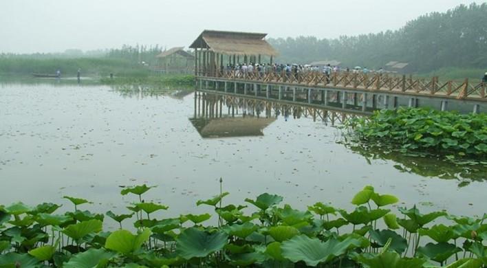 凤城河风景区 aaaa 海陵区