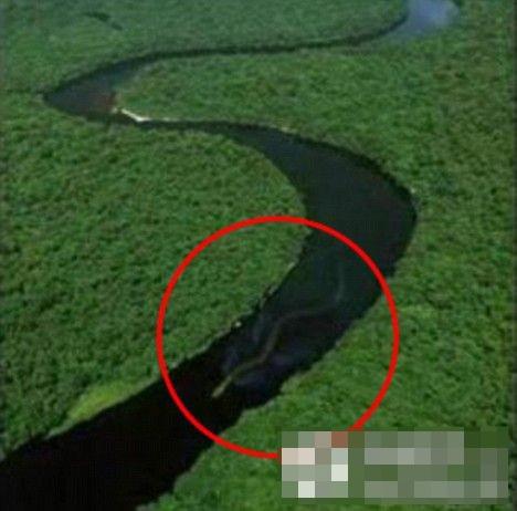 十大神秘生物尼斯湖水怪