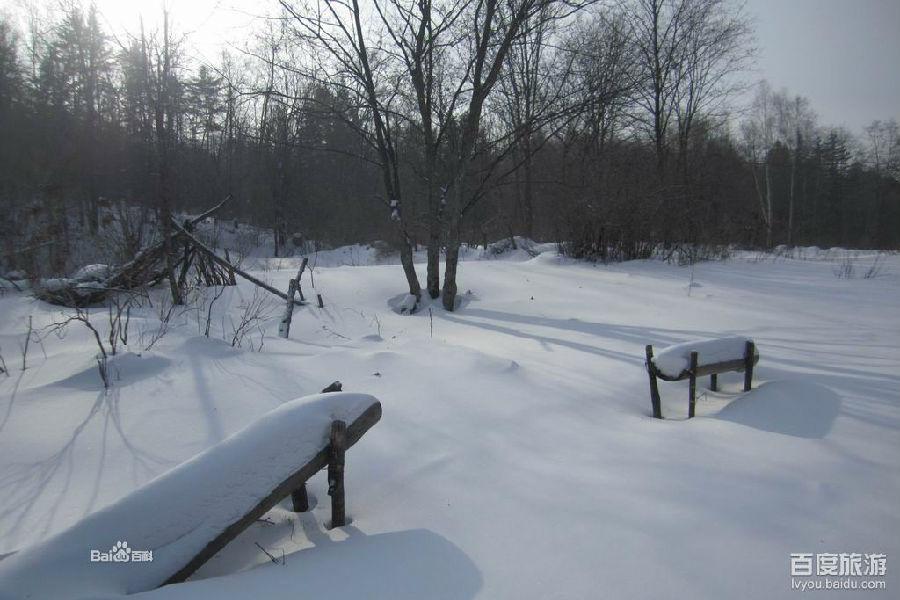 威虎山森林公园春季风光秀丽,冬季皑皑白雪,茫茫林海,呼啸猛虎,巍巍