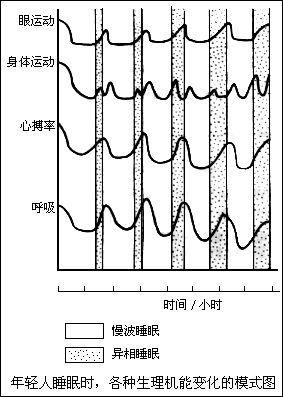 三步异相电动机电路图
